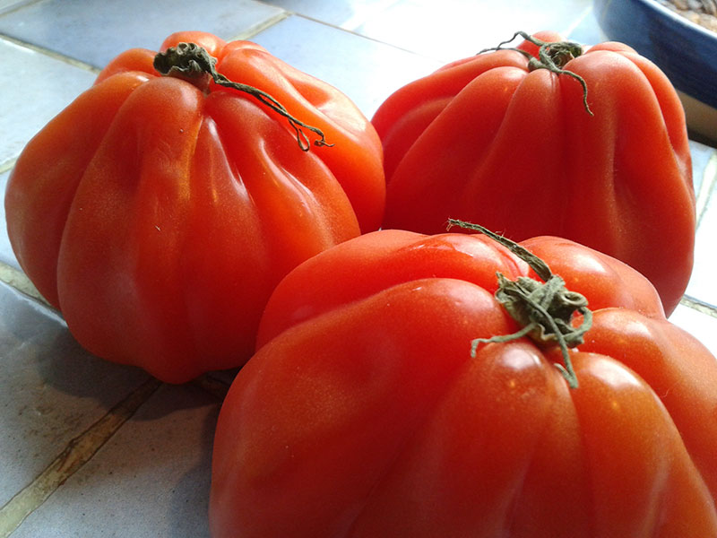 Locally grow beef tomatoes