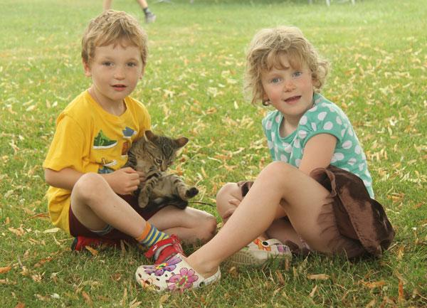 Cousins and kitten