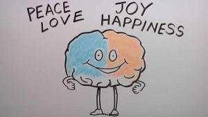 The Very Happy Brain