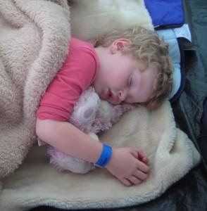 Indy asleep